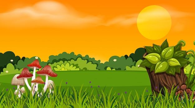 Hintergrunddesign der landschaft mit park bei sonnenuntergang