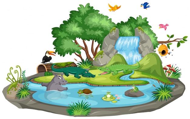 Hintergrundszene von krokodilen durch den wasserfall