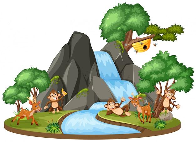 Hintergrundszene von tieren durch den wasserfall