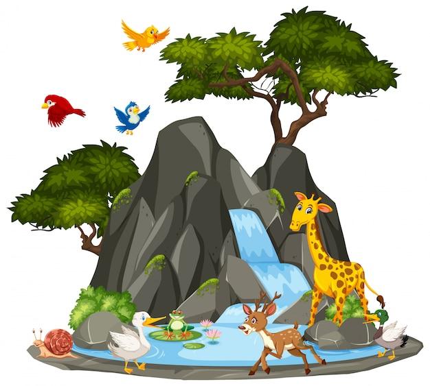 Hintergrundszene von tieren und von wasserfall der wild lebenden tiere