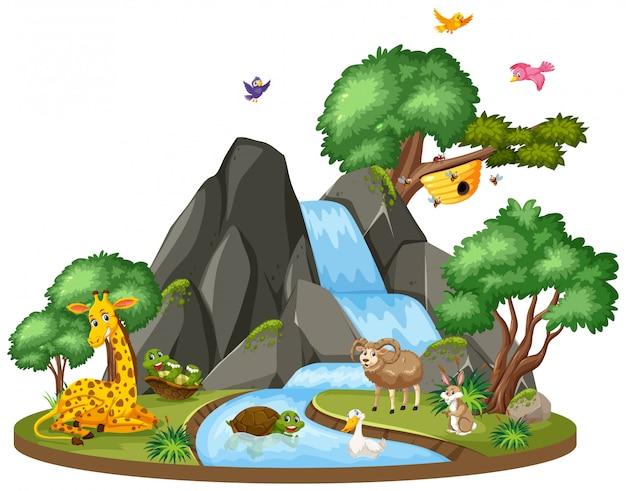 Hintergrundszene von wild lebenden tieren durch den wasserfall