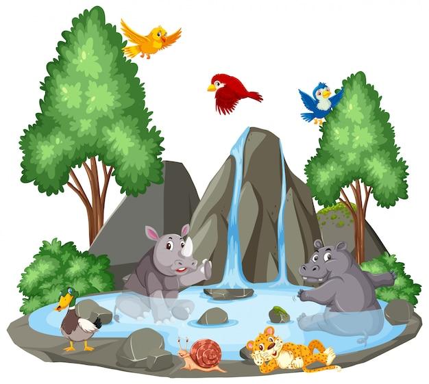 Hintergrundszene von wilden tieren durch den wasserfall