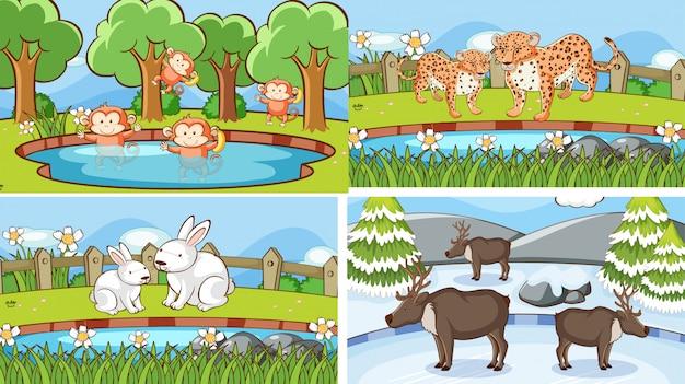 Hintergrundszenen von tieren in freier wildbahn
