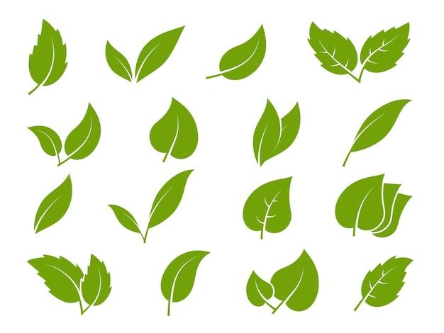 Hinterlässt symbole. junge grüne blätter bäume und pflanzen in verschiedenen eleganzformen, kräutertee-blatt-öko, bio-bio-laublandschafts-umweltvektor-silhouette-set