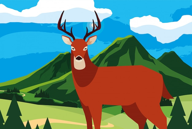 Hirsch tier in einer natürlichen landschaft