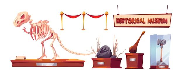 Historisches museum mit dinosaurierskelett und archäologischen exponaten. cartoon-set von funden der paläontologie und archäologie, prähistorischen tieren und primitiven werkzeugen des höhlenmenschen