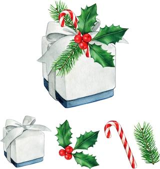 Hochwertiges weihnachtsgeschenk des aquarells mit stechpalmenkiefernzweigen und zuckerstange
