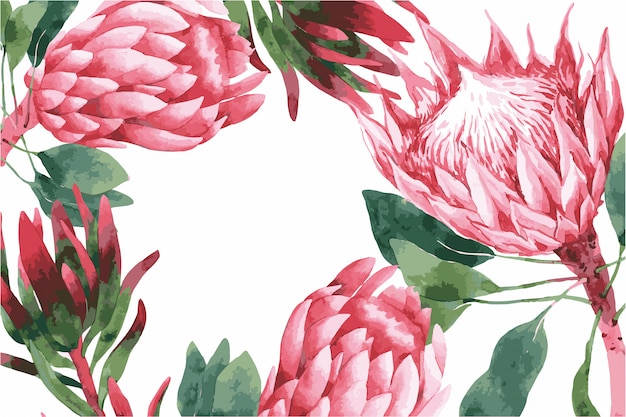 Hochzeitseinladungskartenschablone mit rosa frühlingsblumen, protea, illustration.