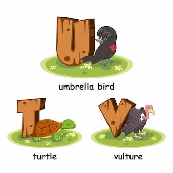 Hölzerner alphabet-tier-schildkröten-geier-regenschirm-vogel
