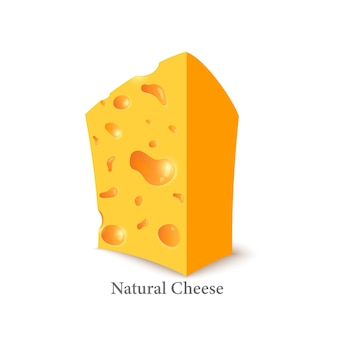Holländischer käse low poly frisch nahrhaft leckerer fester käse käse in triangulationstechnik