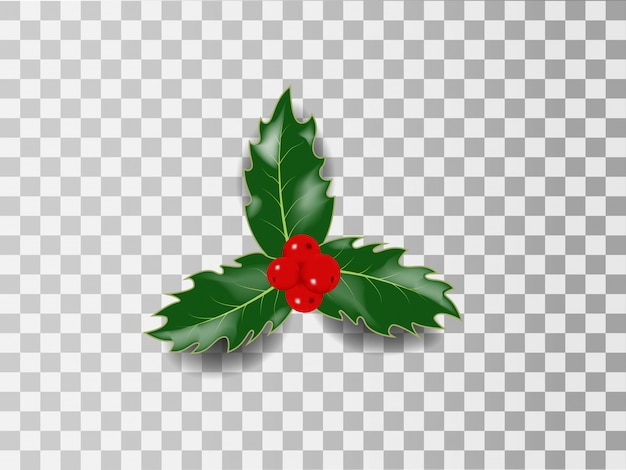 Holly christmas realistic vector