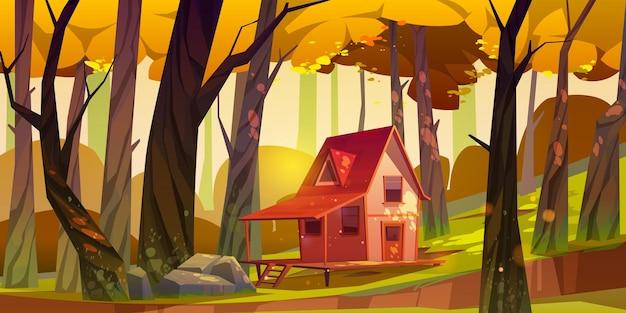 Holzpfahlhaus im herbstwald. alte hütte mit terrasse auf pfählen in tiefem holz mit fallenden sonnenstrahlen unter fallenden bäumen.