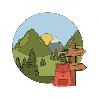 Holzpfeil-leitermarke mit pinienbäumen
