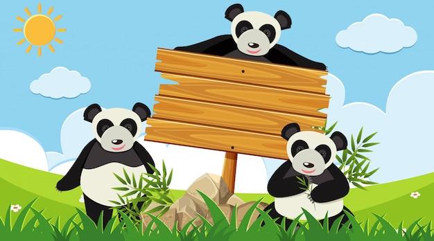 Holzschild mit drei pandas im park