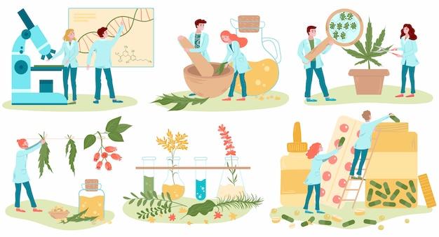 Homöopathie und natürliche alternative medizin, pflanzliche medizinische behandlung und homöopathenmediziner-satz der wohnung lokalisiert auf weißen abbildungen.