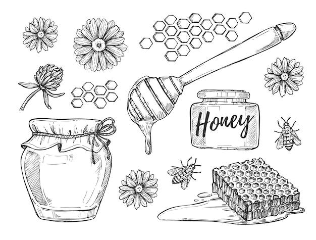 Honig, der hand gezeichneten satz macht