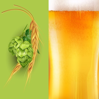 Hopfen-, malz- und bierillustration