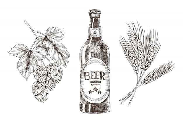 Hopfen- und weizenbündel lokalisierten bier-bestandteile
