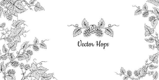 Hopfenpflanze zweig skizze rahmen kartenvorlage design
