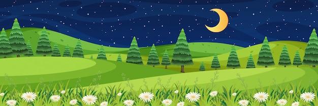 Horizont naturszene oder landschaftslandschaft mit waldblick und mond am himmel bei nacht