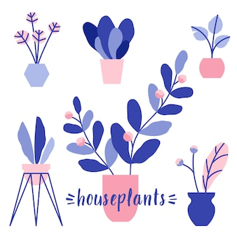 Houseplants-vektorillustrationssatz. blumen in töpfen mit blättern und blüten. dekorative zimmerpflanzen.