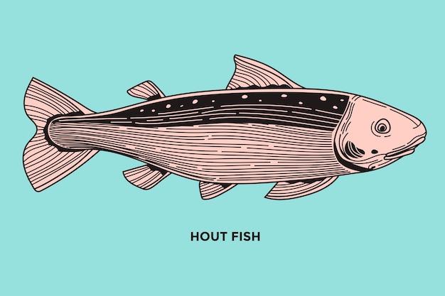 Hout fish illustration mit optimiertem strich