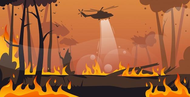Hubschrauber löscht gefährliches verheerendes feuer in australien, das das trockene holz des buschfeuers kämpft, das die bäume feuert, die die horizontalen intensiven orange flammen des naturkatastrophenkonzeptes feuern