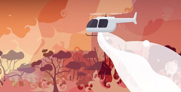 Hubschrauber löscht gefährliches verheerendes feuer in australien im kampf gegen buschfeuer trockene wälder brennende bäume, die naturkatastrophenkonzept intensive orange flammen horizontal bekämpfen