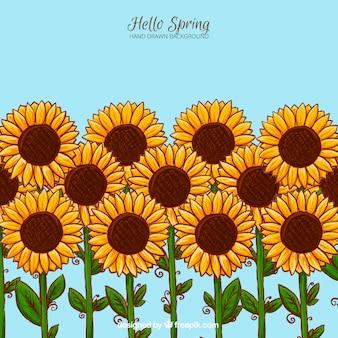 Hübsche hand gezeichnet sonnenblumen