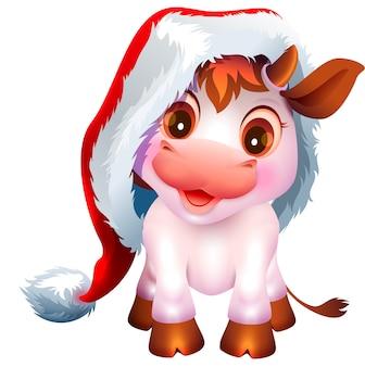 Hübsches weißes kuhkalbsymbol des neuen jahres 2021. netter babybulle im weihnachtsmannhut. isoliert auf weißer karikaturillustration
