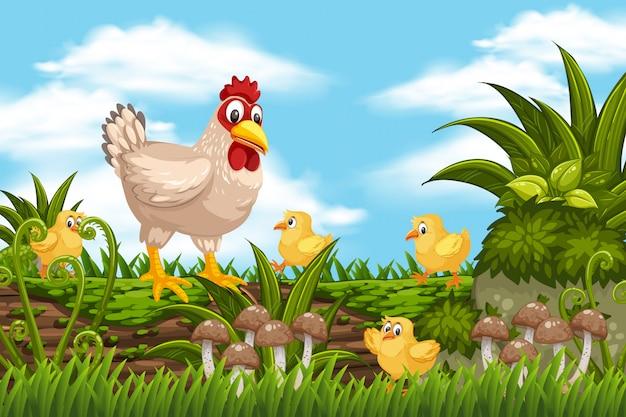 Hühner in der dschungelszene