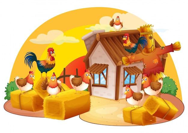 Hühner und vogelscheuche auf dem bauernhof