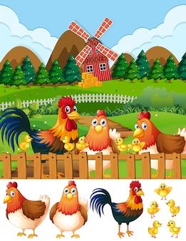 Hühnerfamilie am ackerland