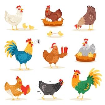 Hühnerkarikaturkükencharakter henne und hahn verliebt in babyhühner oder henne, die auf eiern im hühnerstall-illustrationssatz sitzen