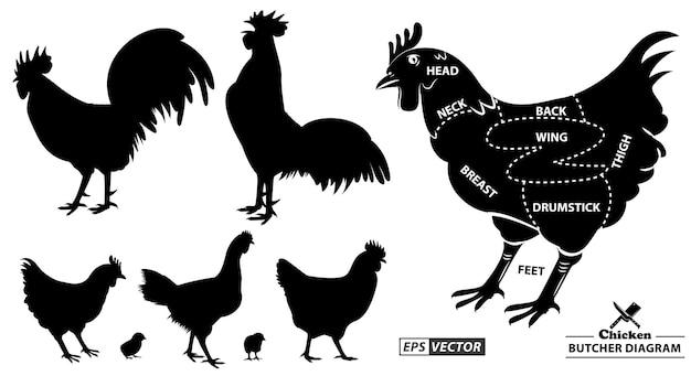 Hühnermetzger-diagramm oder teil des hühnermetzger-konzepts eps-vektor