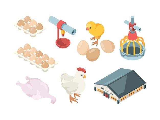 Hühnerproduktion. landwirtschaftliche bio-bio-vogelfütterung geflügelarbeiter und wirtschaftsgebäude isometrisch. illustration bauernhof landwirtschaft, hühnerei und geflügel