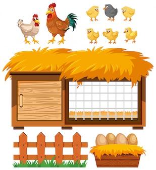 Hühnerstall und viele hühner auf weißem hintergrund