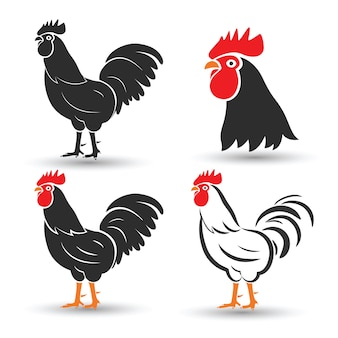 Huhn vektor