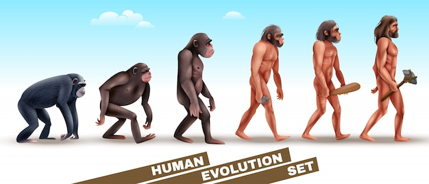 Human evolution characters set