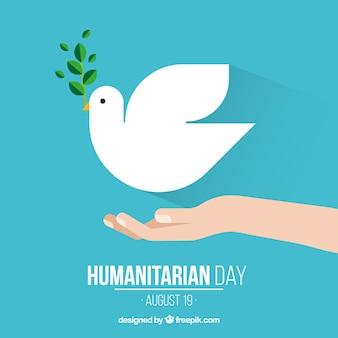 Humanitäre tag, taube auf der hand