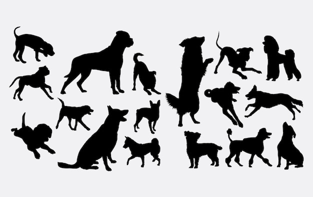 Hund aktion silhouette