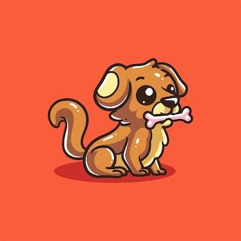Hund beißt knochen