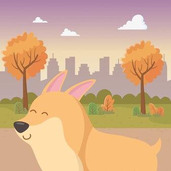 Hund cartoon