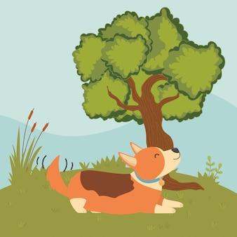 Hund der karikatur