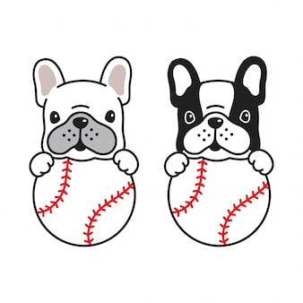Hund französisch bulldog baseball