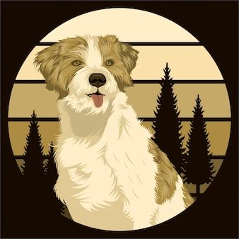 Hund im freien sonnenuntergang retro