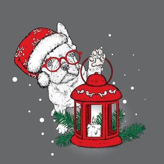 Hund in einer weihnachtsmütze mit einer laterne