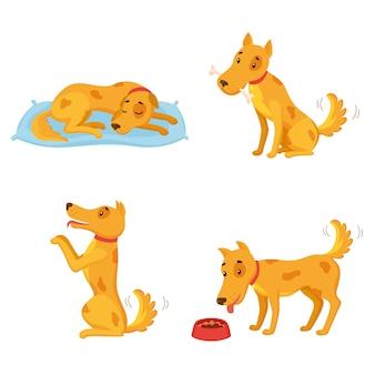 Hund in verschiedenen staaten. cartoon-zeichensatz. schlafen, knochen nagen, durchführen, essen.