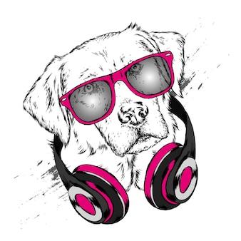 Hund mit kopfhörern und sonnenbrille