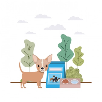 Hund mit schüssel und haustierfutter auf landschaft
